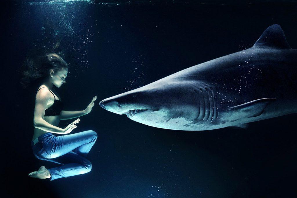 Hai Unterwasser Frau Jeanshose